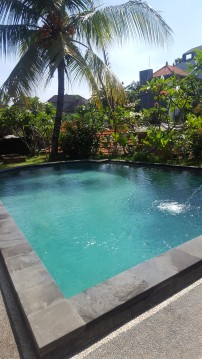 Here's my pool, by the way!