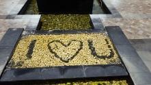 I love you too, Bali